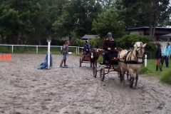 Obstakeltraining 22-6-2013