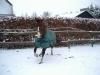 winter-wendola